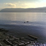 Herbstpaziergang am Lago Maggiore